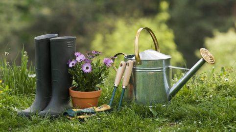 secrets-jardinage